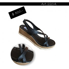 ART 220A